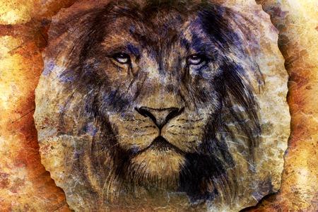 lion dessin: lion visage de dessin sur le collage de papier vintage, abstrait. lentilles de contact.