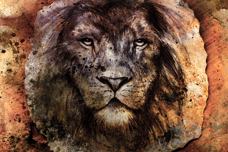 eye drawing: Drawing of a lion head with a majestically peaceful expression on wood abstract background. eye contact.