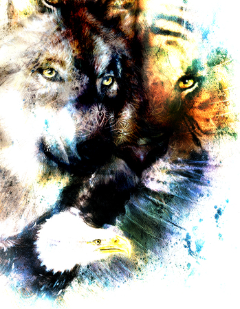 marvelous: painting of eagle and tiger with wolf, abstract background, color with spot structures.