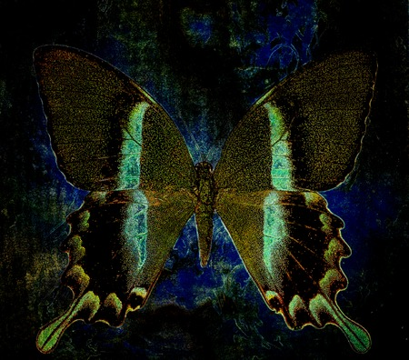 rust: color butterfly, illustration and mixed medium, abstract  background, vintage rust effect