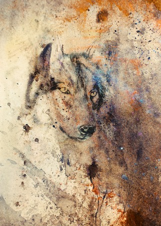 Wolf painting, color abstract effect on background. Stock Photo - 47850502