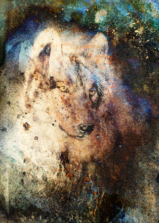 Wolf Painting, Color Abstract Effect On Background. Stock Photo ...