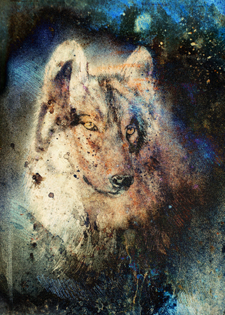 mountainside: Wolf painting, color abstract effect on background. Stock Photo