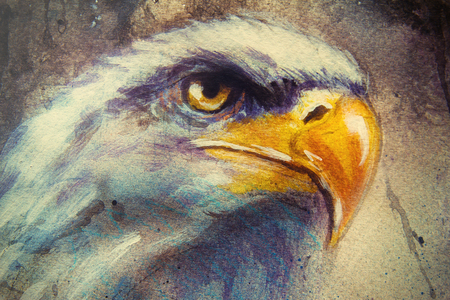 marvelous: painting of eagle on an abstract background, color with spot structures