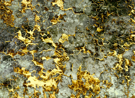 abstract gold background, color collage with spots and desert crackle. And gold structure. Money concept