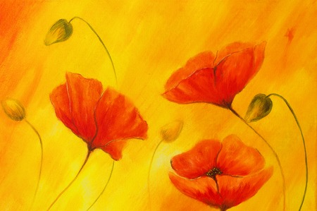 airiness: Red poppy on orange background. Red flower on abstract color background. Red poppies. Stock Photo