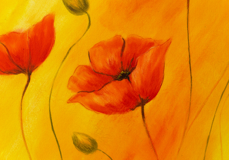 airiness: Red poppy on orange background. Red poppies. Red flower on abstract color background.