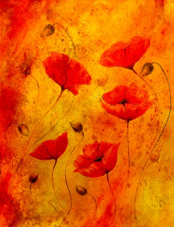 airiness: Red poppy on color background. Red poppies. Red flower on abstract color background and spots