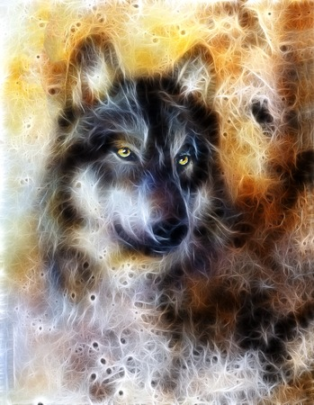 wolf couple: Wolf, color abstract background, multicolor illustration and fractal effect.