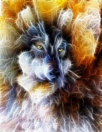 mountainside: Wolf, color abstract background, multicolor illustration and fractal effect.