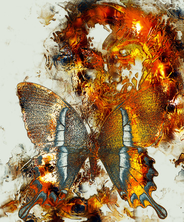Beautiful Goddness women and color butterfly, mixed media, abstract color background, Golden effect Фото со стока