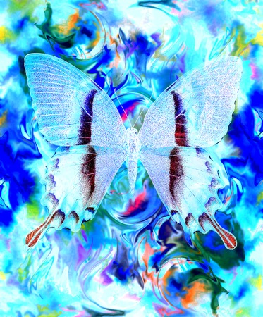 crackle: illustration of a butterfly, mixed medium, abstract color background and color desert crackle  effect