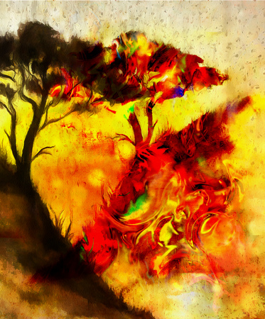uncultivated: Painting sunset, and tree, wallpaper landscape, color collage. and abstract grunge background with spots. Red, orange, yellow color Stock Photo