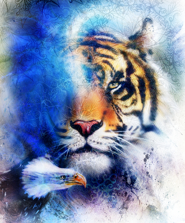 portrait tiger with eagle.  Color Abstract background and ornament, vintage and paper structure. Animal concept, eye contact. Blue, orange, black and white color