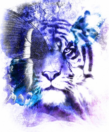 cartoon eagle: portrait tiger with eagle and butterfly wings.. Color Abstract background and ornament, vintage structure. Animal concept. Blue, black and white color