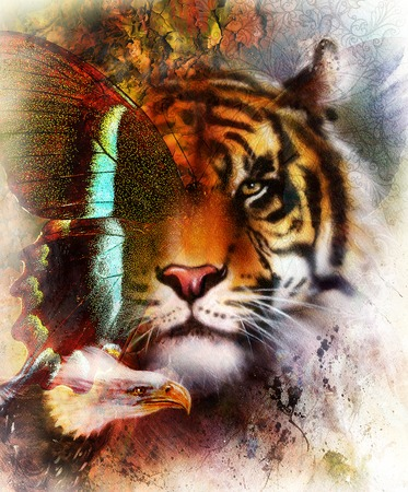 marvelous: tiger with eagle and ornamental mandala and butterfly,  wildlife animals on painting background, Eye contact. Brown, orange, black and white color