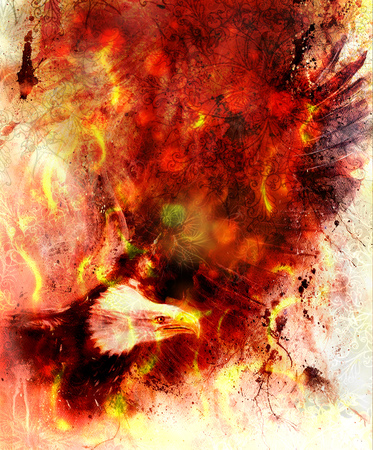 marvelous: beautiful painting of eagle on an abstract background, color with fire and spot structures and ornamental mandala.