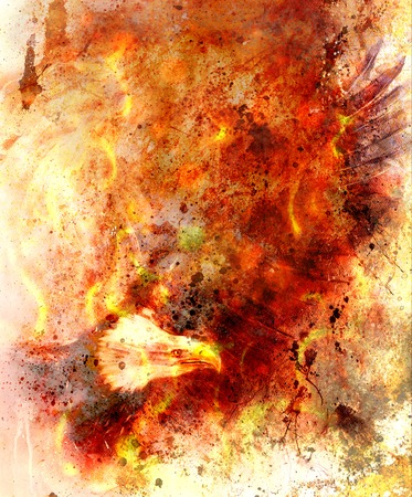 marvelous: beautiful painting of eagle on an abstract background, color with fire and spot structures.