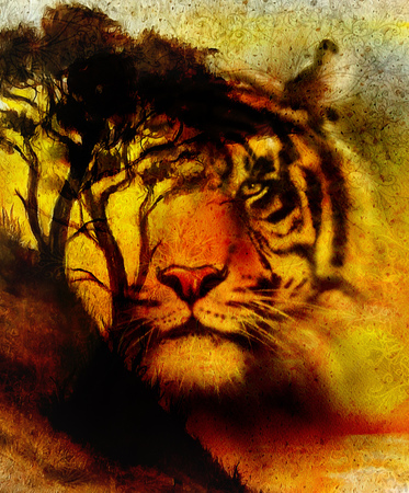 extreme terrain: Painting sunset, sea and tree, and tiger portrait,  wallpaper landscape, color collage. and abstract grunge background with spots