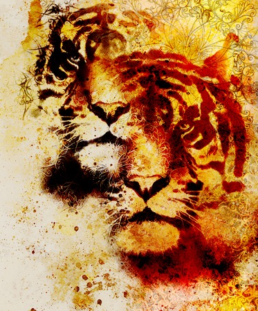marvel: tiger collage on color abstract  background and mandala with ornament , wildlife animals