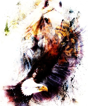 portrait tiger with eagle.  Color Abstract background, vintage and paper structure. Animal concept, eye contact Stock Photo