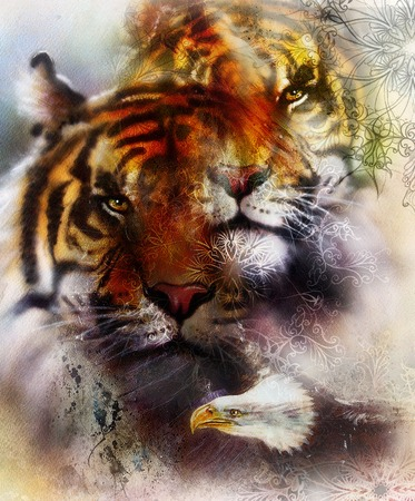 marvel: beautiful painting of eagle and tiger on an color abstract background with ornamental pattern, with spot structures.