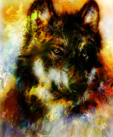 royal safari: Wolf painting, color  background on paper , multicolor illustration. and ornamental mandala, computer collage