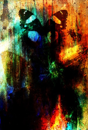 medium: illustration of a  color butterfly, mixed medium, black background.