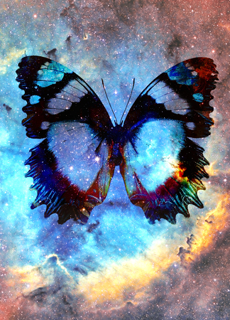 illustration of a butterfly in cosmic space. mixed media, abstract color background