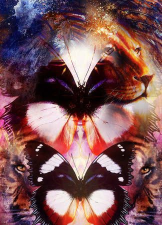royal safari: portrait Lion and Tiger face and butterfly wings, profile portrait, on colorful abstract  background