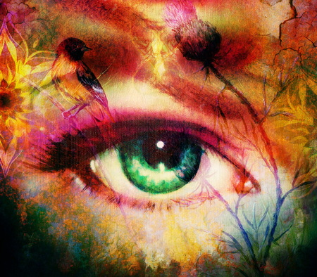 godness: green godness women eye with birds on multicolor background eye contact with mandala linear ornament