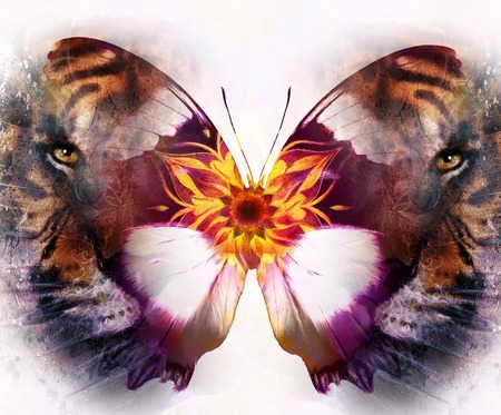 marvel: portrait tiger and butterfly. computer collage. Color Abstract background. White background. Animal concept