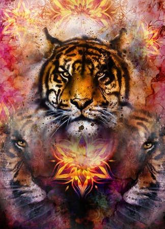 marvel: gentle portrait tiger on ornamental background. computer collage. Color Abstract background, old paper structure. Animal concept