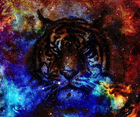 marvel: gentle portrait tiger. computer collage. Color Abstract background. Animal concept Stock Photo