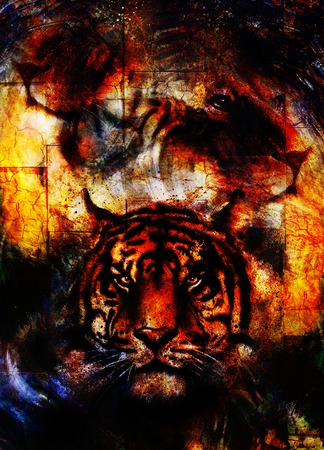 royal safari: portrait lion and Tiger face, profile portrait, on colorful abstract  background. Abstract color collage with spots and wall structure