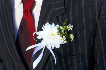 lapel: close-up black jacket groom on their wedding day with a red tie and lapel buttonhole Stock Photo