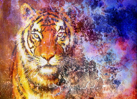 concept magical universe: tiger head  in space with stars, computer collage