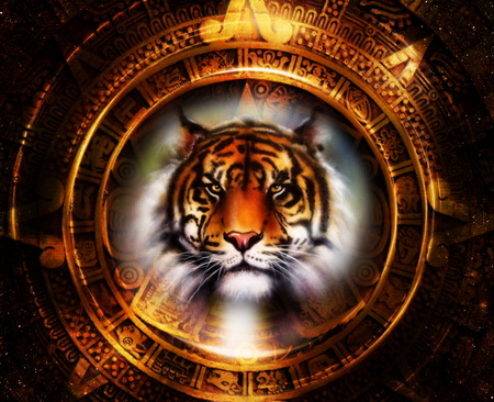 Ancient Mayan Calendar and Tiger head, abstract color Background, computer collage, Eye contact