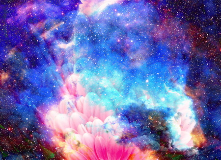 Space and stars with flower, color galaxi  background, computer collage Stock Photo