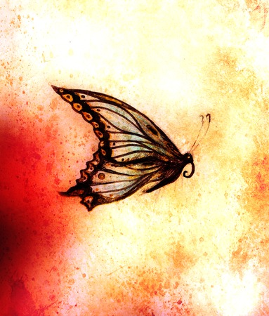 medium: illustration of a butterfly, mixed medium, abstract color background