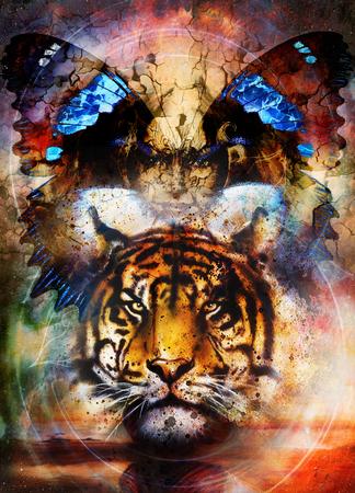 tigres et des ailes de papillon avec visage de femme. Banque d'images