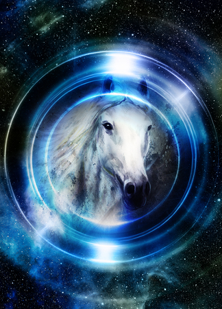 royal safari: Horse in space, in circle light. Mirror on the planet Earth.