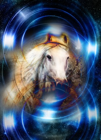 Horse in space, in circle light. Mirror on the planet Earth.