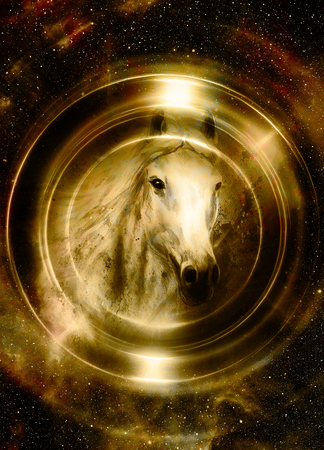 untamed: Horse in space, in circle light. Mirror on the planet Earth.
