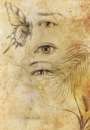 awakening: Woman eye and butterfly with plants, Drawing on vintage paper