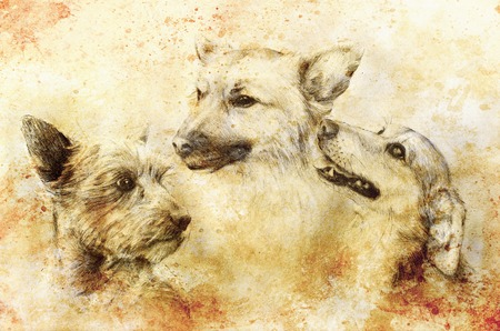 Dogs pencil drawing on old paper, vintage paper and old structure with color spots Stock Photo