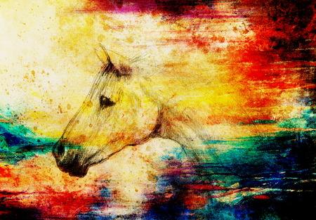 caballo negro: Dibujar caballo l�piz sobre papel viejo, papel de la vendimia y la estructura de edad con manchas de color Foto de archivo