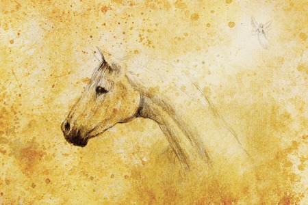old horse: horse pencil drawing and little fairy on old paper, vintage paper and old structure with color spots