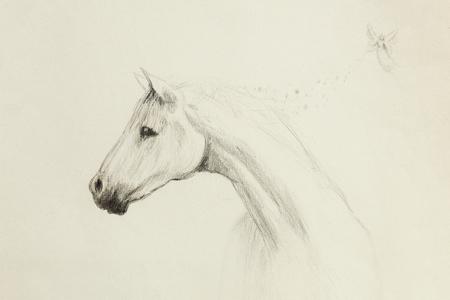 lapiz y papel: el dibujo de lápiz del caballo y pequeña hada en el papel viejo, papel de la vendimia