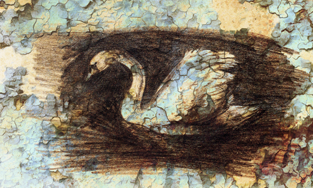 duvet: pencil drawing swan on old paper background Stock Photo